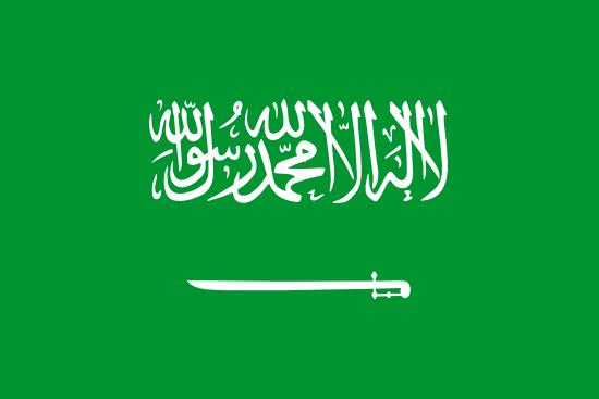 Schengen visa for Saudi Arabian Citizens